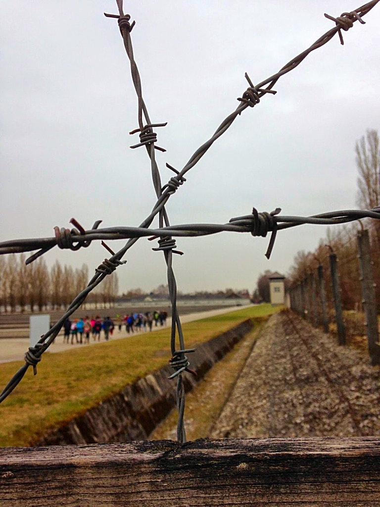 Picture of barbed wire inside Dachau Concentration Camp