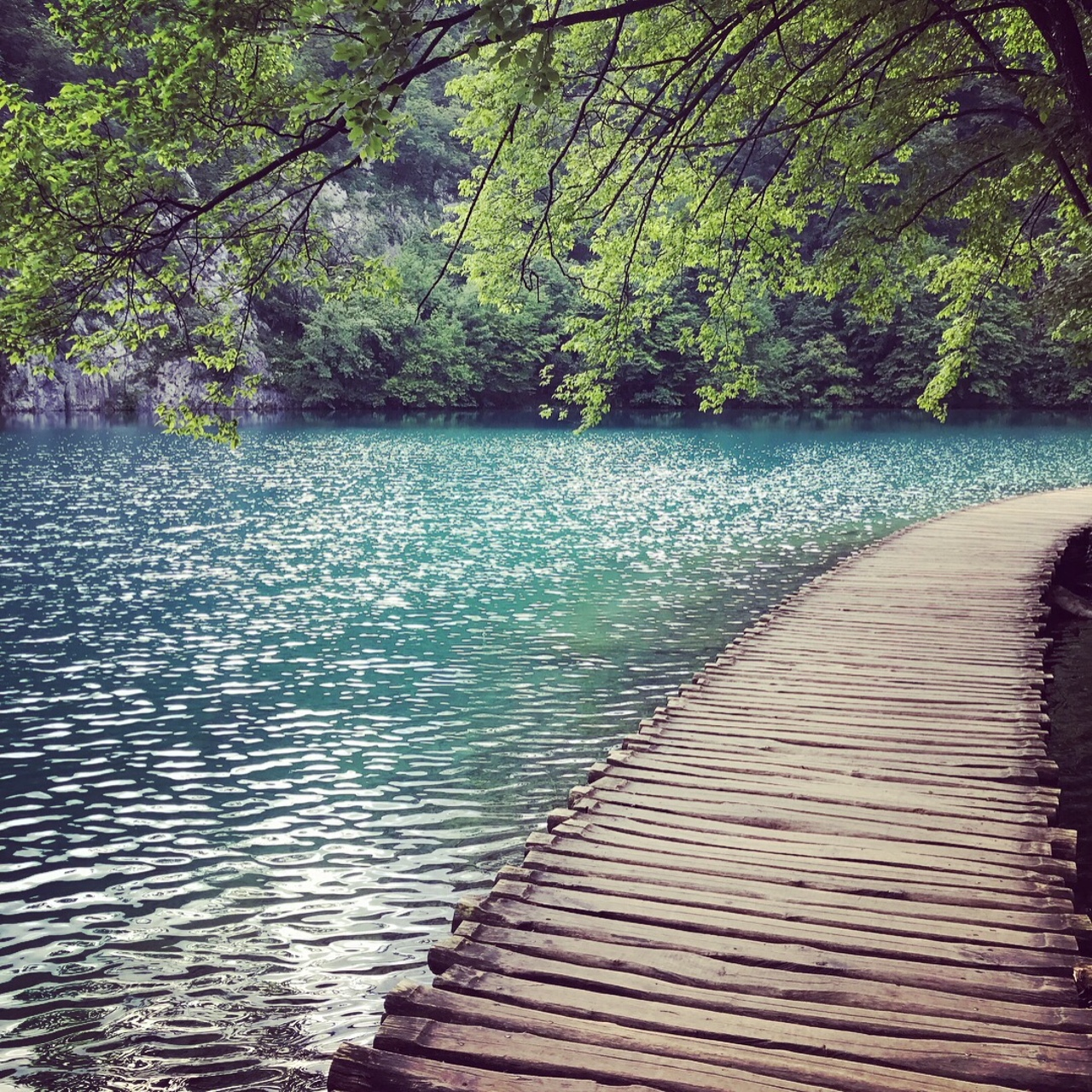 Picture of Plitvice Wooden Walkway