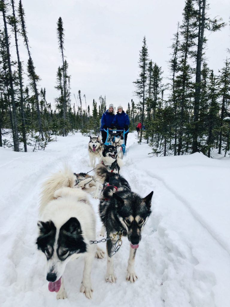 Picture of Inuit Husky Dogsled